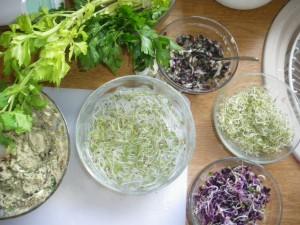 Les graines germées sont bonnes pour la santé